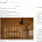 Blog|havane